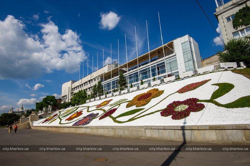 Большая цветочная ветка появилась на Университетской горке (ФОТО)