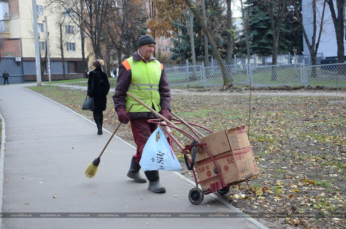 В Харькове снесли аварийные деревья (ФОТО)