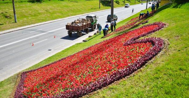 В городе создают стометровую цветочную надпись