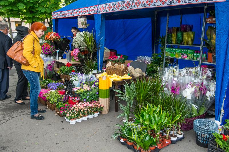 В саду Шевченко открылась цветочная выставка
