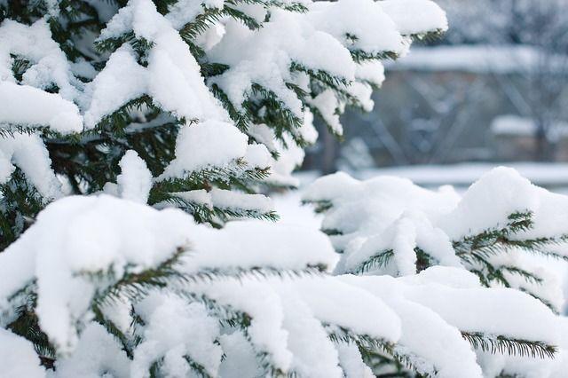 Завтра в Харкові - до 1 градусу морозу