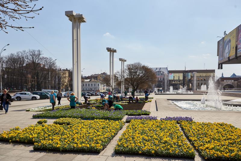 Біля оперного театру висадять близько 16 тисяч квітів