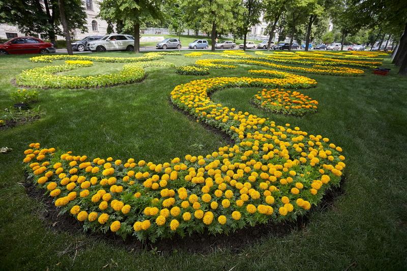 У Харкові закінчується сезон посадки квітів