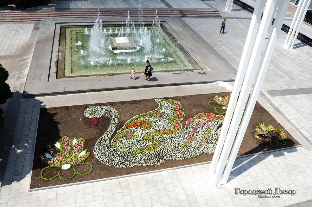 Біля оперного театру з'являться лебеді з квітів