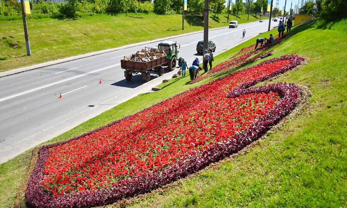 У місті створюють стометровий квітковий напис